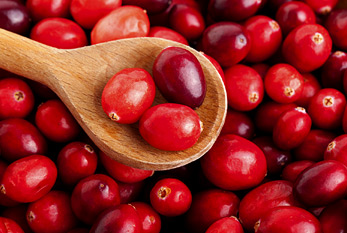 Fresh red cranberries with wooden spoon