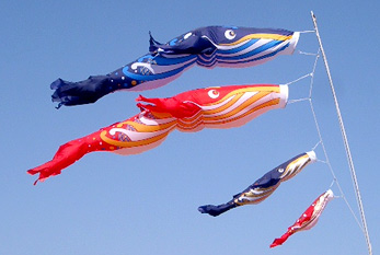 Koinobori, flags in the shape of koi (carp), are popular in Japan on Kodomo no Hi