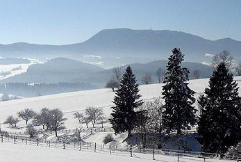 Snow-covered landscape in winter.