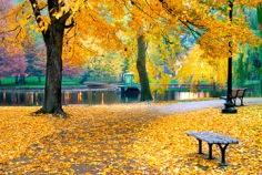 Beginning of meteorological autumn 2015