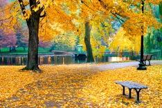 Beginning of meteorological autumn 2017