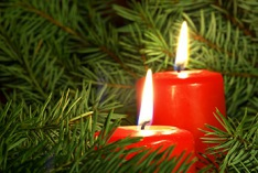 Second Sunday of Advent 2019