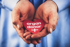National Organ Donor Day 2018
