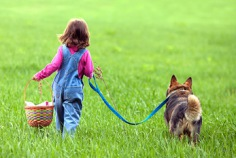 Walking the Dog Day 2018