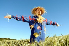 Build A Scarecrow Day 2022
