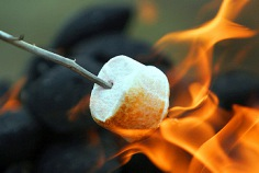 Toasted Marshmallow Day 2016