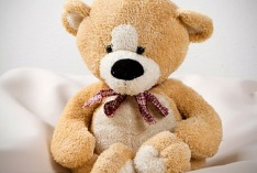 Teddy Bear Day 2022